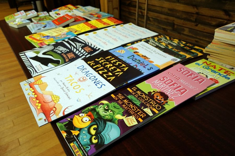 Some of the books available during a free summer lunch program at Izaak Walton Center in Elgin. A report released Tuesday shows that only 26% of kindergartners surveyed statewide last fall demonstrated readiness in all three of a trio of key development areas.