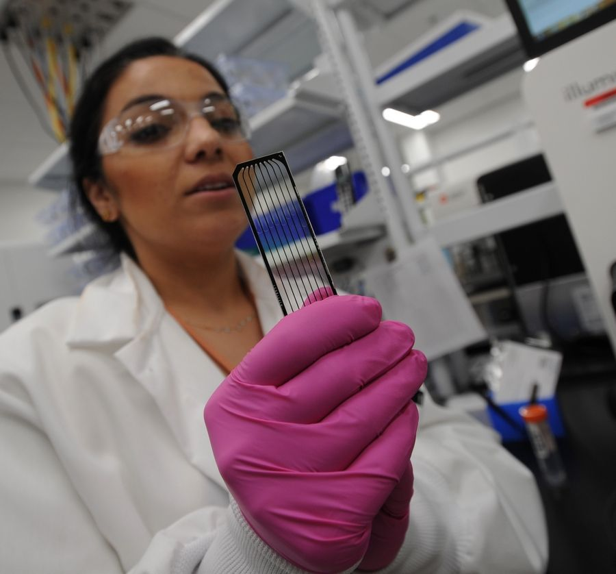 "Holding a slide containing human genomes, scientist Areej Ammar uses high-power computers in the AbbVie laboratory in North Chicago to create a ""blueprint"" of a person's DNA."