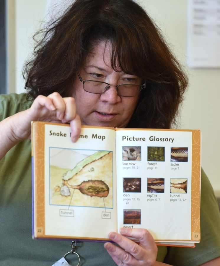 Barbara Melcer, a teacher for the Hawthorn Enrichment Institute, reads a book about snakes to students in the Wild Kingdom class Tuesday at Townline Elementary School in Vernon Hills.