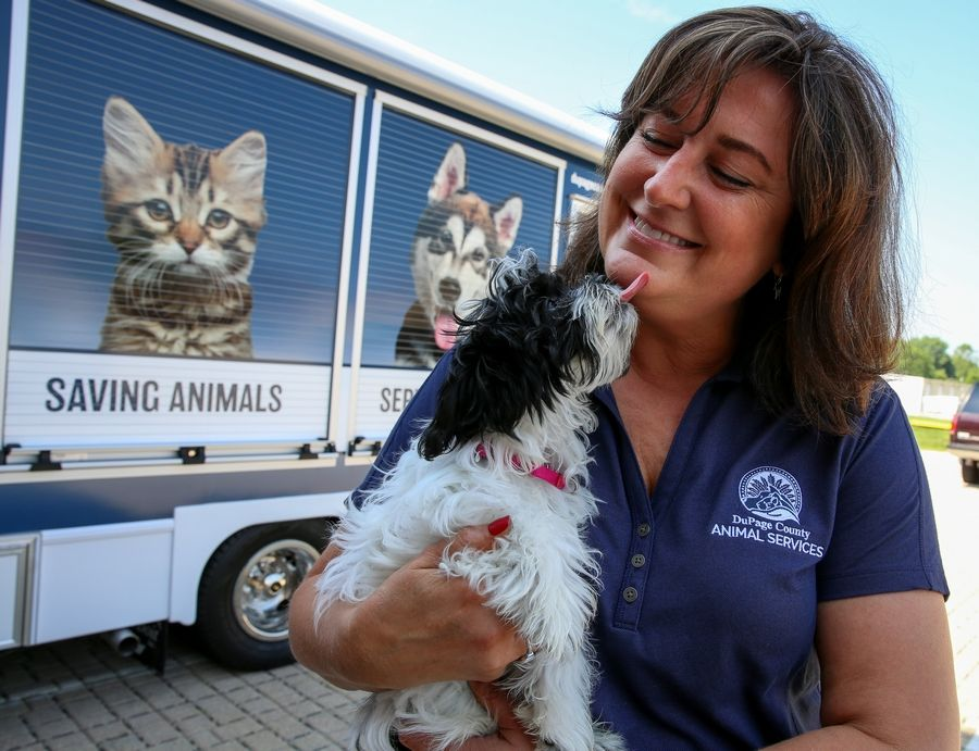 What suburban residents are doing to shut 'puppy mills' down