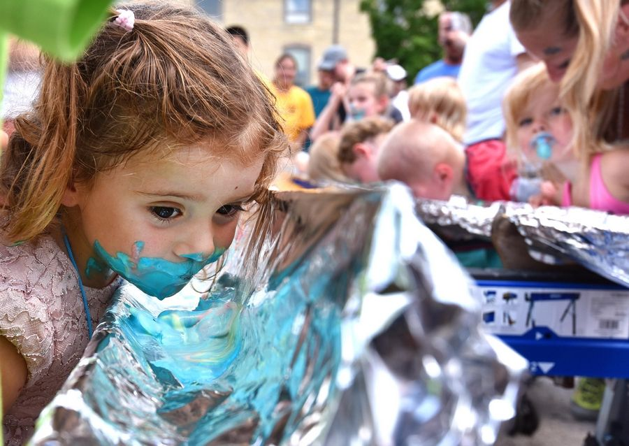 Gianna Marotta, then 2, checks her progress as she digs in to a trough of ice cream in a contest during last year's Windmill City Festival in Batavia.