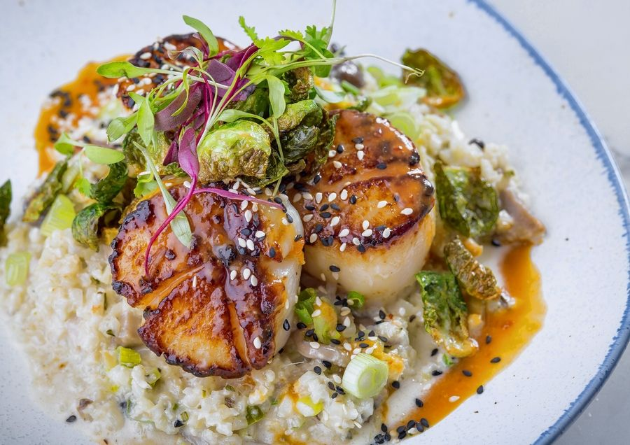 The Hampton Social, which opens Friday in South Barrington, serves fresh seafood dishes such as scallop risotto.