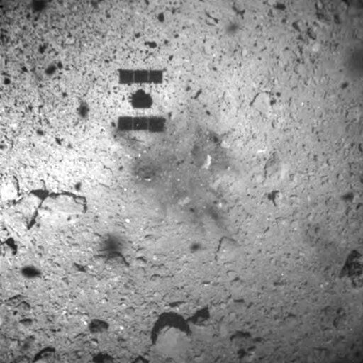 FILE - This Feb. 22, 2019, file image released by the Japan Aerospace Exploration Agency (JAXA) shows the shadow, center above, of the Hayabusa2 spacecraft after its successful touchdown on the asteroid Ryugu. Japan's space agency JAXA said Thursday, July 11, 2019 that data transmitted from the Hayabusa2 indicated its second successful touchdown on the distant asteroid to complete a historic mission - to collect underground samples in hopes of finding clues to the origin of the solar system. (JAXA via AP, File)