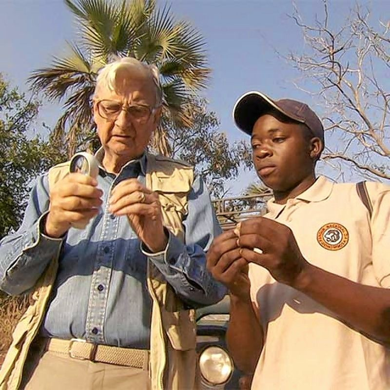 "On Monday, July 22, the Green Screen Environmental Documentary Film Series will begin with ""The Guide: A Biologist in Gorongosa"" featuring famed biologist E.O. Wilson."