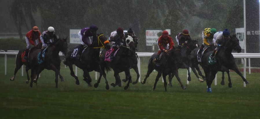 The Mike Spellman Memorial Handicap, held in honor of the late Daily Herald sports winter, takes place in pouring rain at Arlington International Racecourse Saturday.