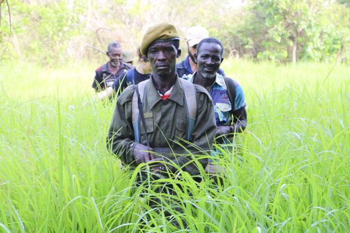 In this photo of Saturday March 16 2019, Rangers walk in a field near the Bire Kpatous game reserve along the Congolese border. South Sudan is trying to rebuild its vast national parks and game reserves following a five-year civil war that killed nearly 400,000 people. The conflict stripped the country of much wildlife but biodiversity remains rich with more than 300 mammal species, including 11 primates, but poaching is a growing threat.