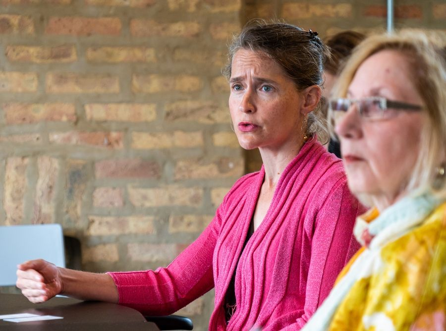 State Reps. Michelle Mussman, left, a Schaumburg Democrat, and Robyn Gabel, a Democrat from Evanston, watch a presentation Monday by Regroup, a Chicago company that says telepsychiatry sessions could expand mental health services and save taxpayers money.