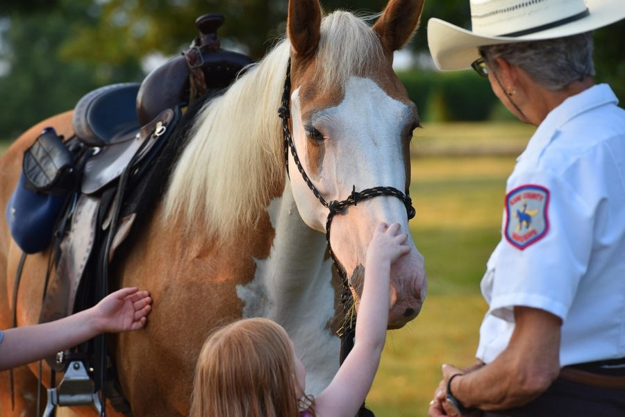 Children get introduced to a Kane County Mounted Ranger during the Kane County Sheriff's National Night Out event in 2018. The Rangers are made up of volunteers who patrol the forest preserves.