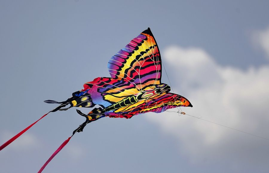 Kites of many different colors will take to the skies Saturday in Elmhurst.