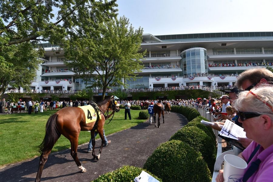 Racehorses parade for the crowd in the paddock area during last year's Arlington Million Day at Arlington International Racecourse.