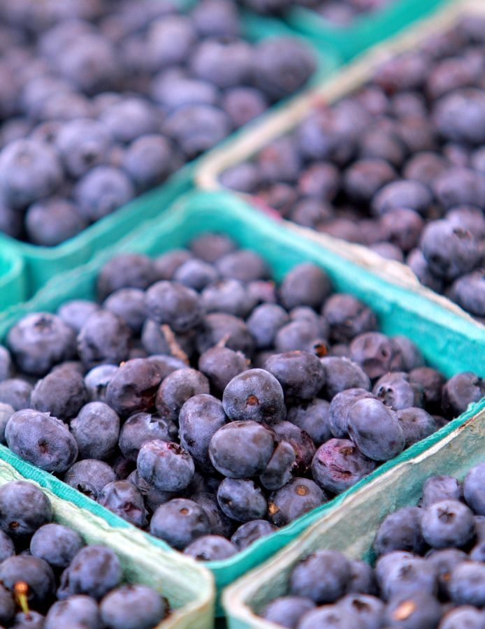 Fresh berries will be the focus of the Blueberry Festival set for Aug. 18 at the Mount Prospect Lions Club Farmers Market.