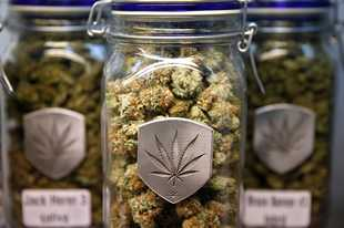 Des Plaines aldermen shot down a proposal Monday night to hold a referendum seeking voter input on whether to allow marijuana sales in the city.