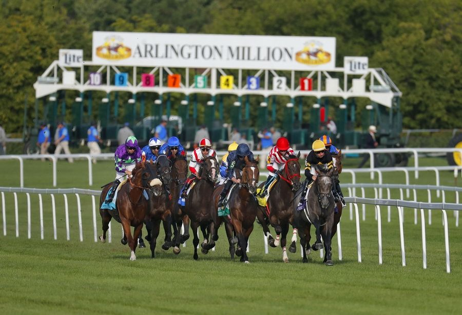Horses take off during the 37th running of the Arlington Million earlier this month.