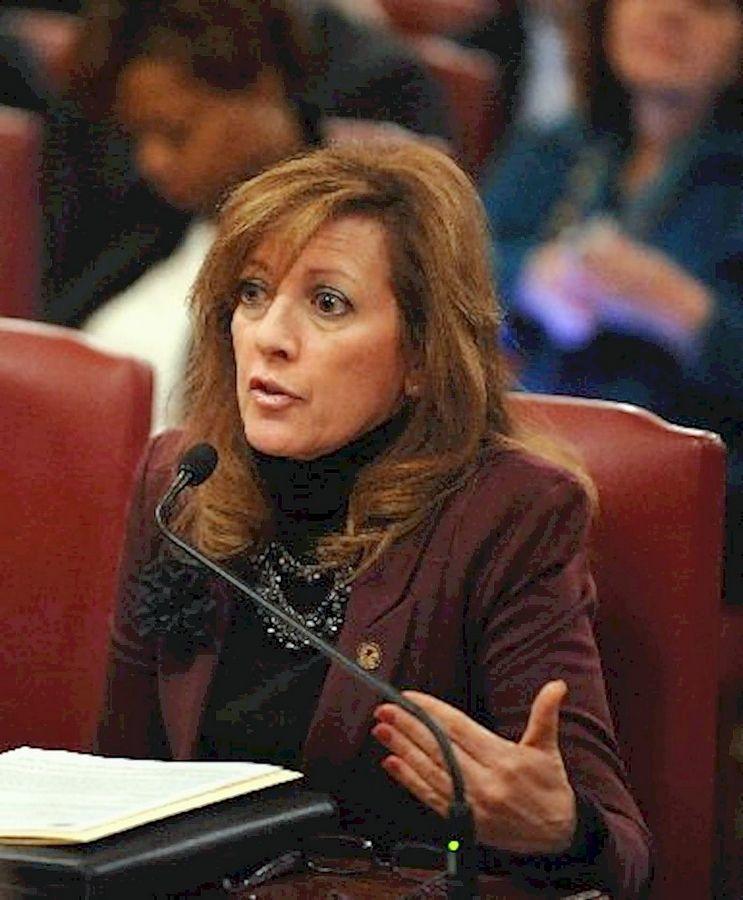 State Sen. Linda Holmes, an Aurora Democrat, sponsored the bill to abolish the Illinois State Charter School Commission.
