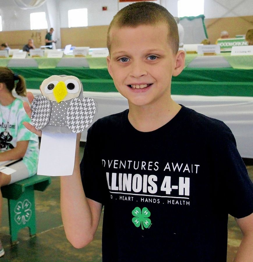 4-H Youth learn and grow at Kane County Fair this summer