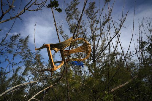 A chair is caught in a grove blown there by Hurricane Dorian's powerful winds, in Pine Bay, near Freeport, Bahamas, Wednesday, Sept. 4, 2019. Rescuers trying to reach drenched and stunned victims in the Bahamas fanned out across a blasted landscape of smashed and flooded homes Wednesday, while disaster relief organizations rushed to bring in food and medicine.