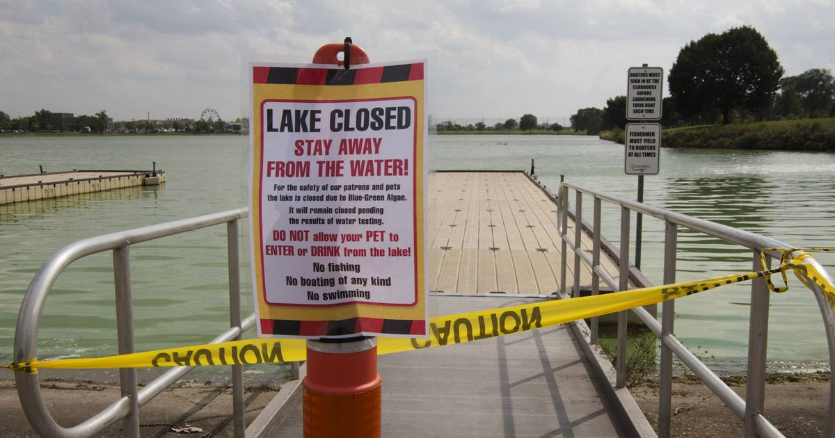 Algae bloom leads park district to close Lake Opeka in Des Plaines
