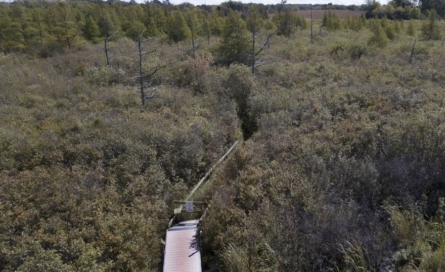 "The portion of the interpretive boardwalk that takes visitors to the ""eye"" of the Volo Bog has been deemed unsafe and is closed."