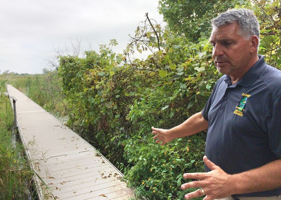 Greg Kelly, site superintendent for the Volo Bog State Natural Area, talks about the condition of the interpretive boardwalk. The floating portion shown is open but the section that takes visitors to the namesake center has been deemed unsafe and closed.