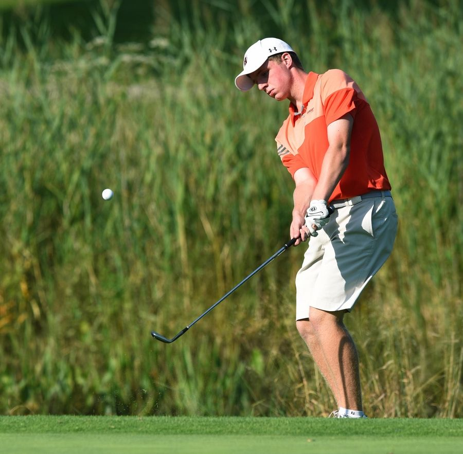 Hersey's Henry Quinn chips onto the 12th green at the Bridges at Poplar Creek golf course in Hoffman Estates Tuesday.