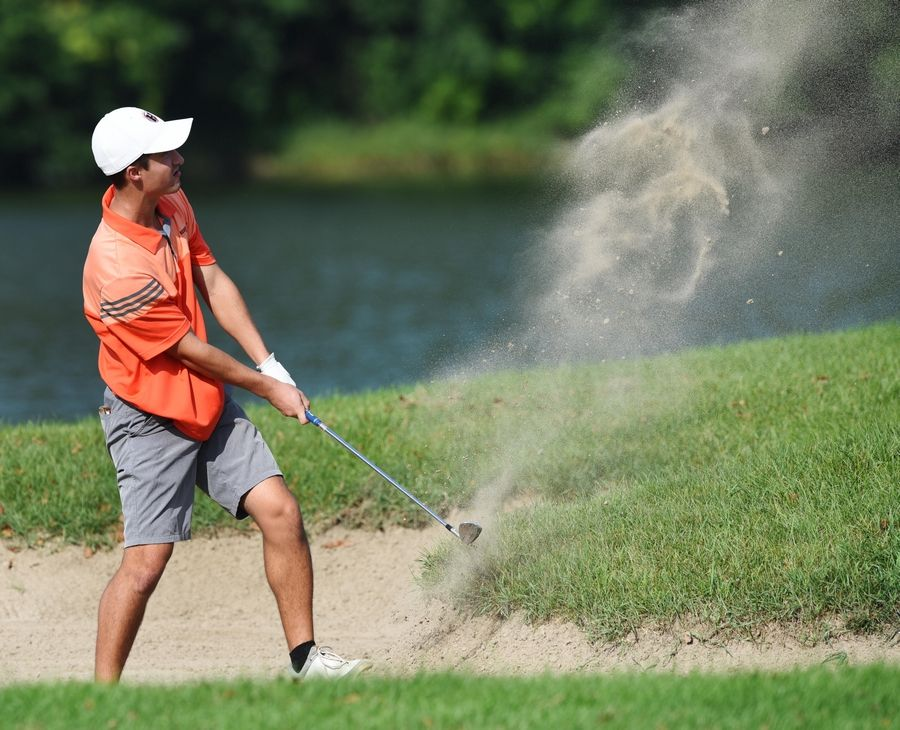 Hersey's Tyler Irwin watches the flight of the ball as he hits out of the bunker on 10th hole at the Bridges at Poplar Creek golf course in Hoffman Estates Tuesday.