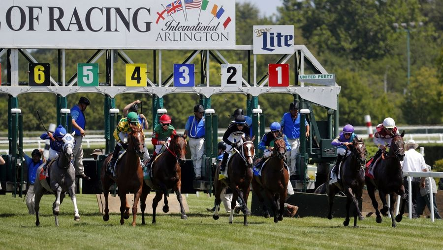 A decision to award live racing dates for 2020 to Arlington International Racecourse was delayed by the Illinois Racing Board, which wants more information from owner Churchill Downs Inc. about the future of racing at the Arlington Heights track.