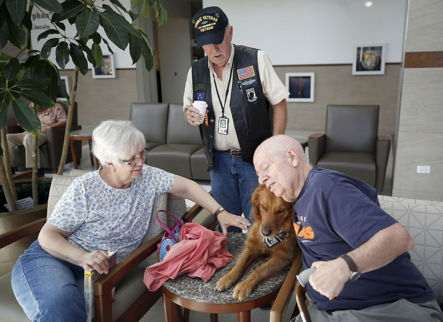 Vietnam veteran Bob Royce of Schaumburg watches Wednesday as Nick Dambrosio, an Air Force veteran, and his wife, Judy, of Naperville get some snuggles in with comfort dog Blitz at the Hines VA Hospital. Royce volunteers in many ways, including as the handler of Blitz for Lutheran Church Charities Kare 9 Military Ministry.