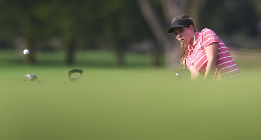 Palatine's Allison Mirczuk chips onto the green during Thursday's girls golf match against Prospect and Barrington at the Mount Prospect Golf Club.