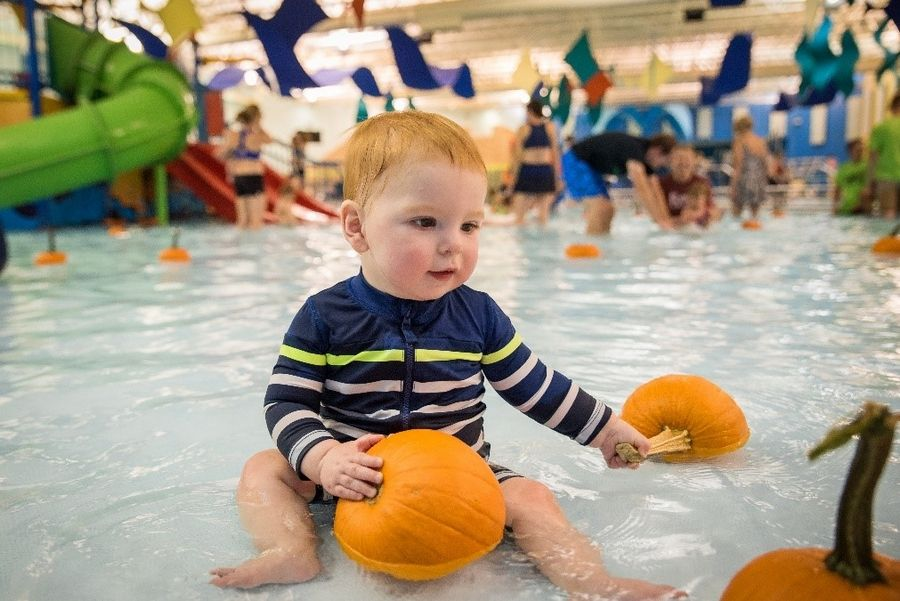 Children ages 12 and younger may hunt for pumpkins in the zero-depth pool at The Water Works during Pumpkin Splash.Schaumburg Park District