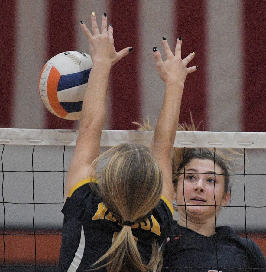 Naperville North's Ellie Hall gets her shot over the net against Neuqua Valley's Riley Ammenhauser in a girls volleyball game in Naperville Tuesday.