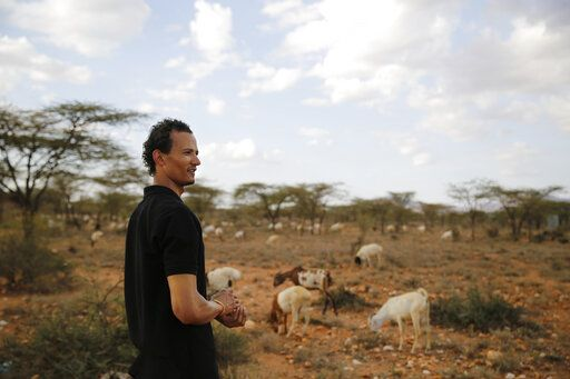 Gerald Erebon looks over livestock at the Archers Post settlement in Kenya on Sunday, June 30, 2019. Erebon has been an outcast all his life: Tall, light-skinned with wavy hair, he looks nothing like the dark-skinned Kenyan man listed as his father on his birth certificate, or his black mother or siblings. He and his family say that's because his biological father is the Rev. Mario Lacchin, an Italian priest of the Consolata Missionaries order who ministered in Archers Post, Kenya in the 1980s.