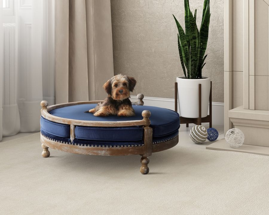 Pottery Barn sells this Antique Wood Pet Bed.