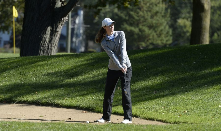 Prospect's Kelly Kavanagh lines up her shot as she works her way to hole No. 17 in the Class 2A Prospect girls golf sectional in Mount Prospect on Monday.