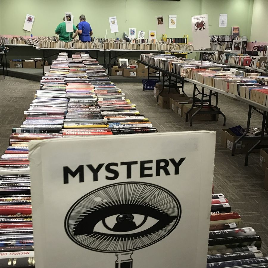 The Friends of the Fox River Valley Public Library District will hold its fall book sale on Oct. 17-19, featuring newly donated materials, including hard covers, paperbacks, romance novels, and children's books.