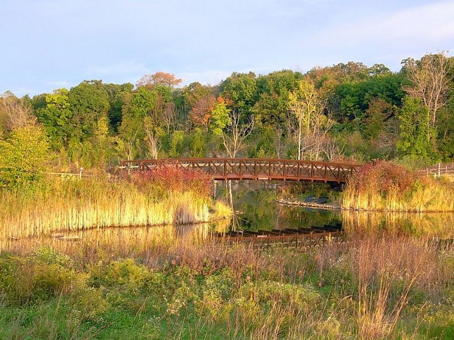 A guided hike tour takes place from 2-3:30 p.m., Sunday, Oct. 20, at Independence Grove Forest Preserve in Libertyville.