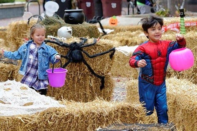 Elgin's Art Harvest on Saturday beckons families downtown ...