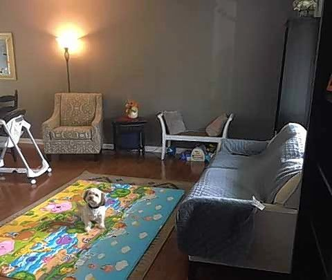 Bradley Magnus of Downers Grove and his wife are busy with work and raising two small children. However, their living room also needs some attention.