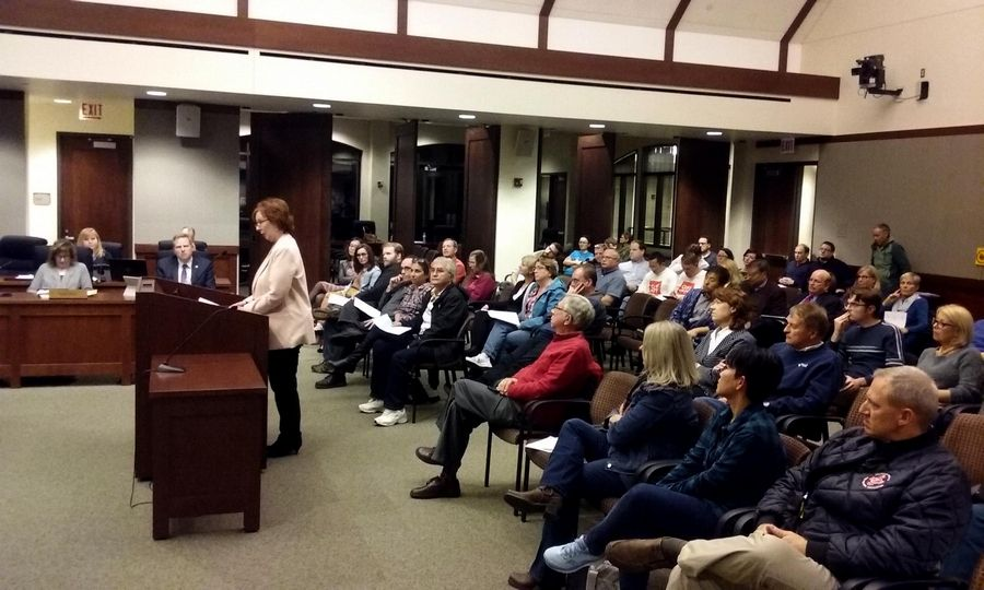 State Sen. Ann Gillespie, an Arlington Heights Democrat, was among the speakers at a village board meeting Monday night asking trustees to allow recreational marijuana sales in town.