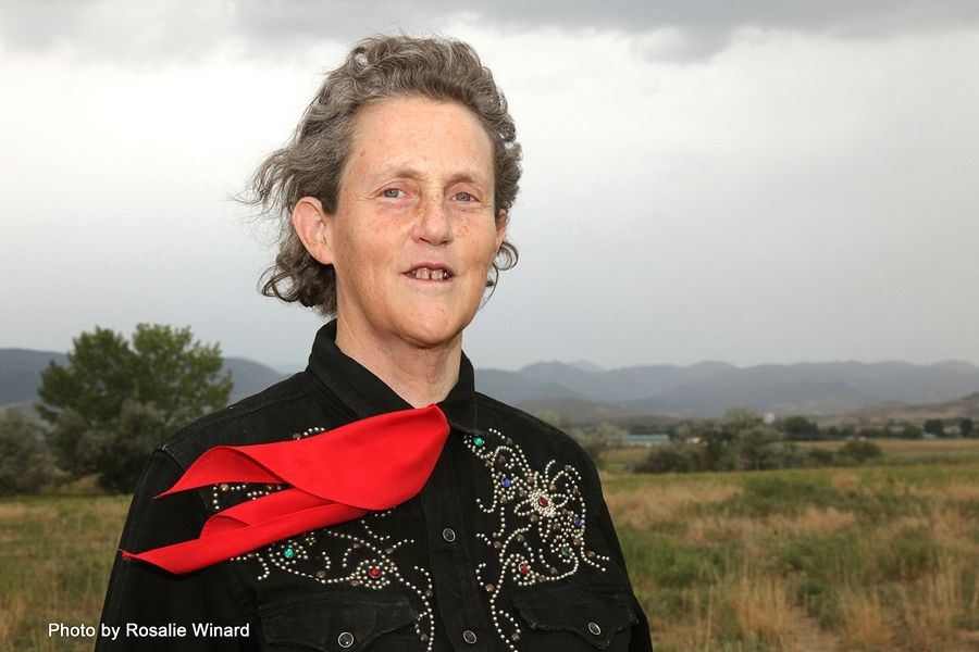 "Temple Grandin, author and animal science professor, will be coming to Wheaton for a two-day event, including ""A Night With Temple Grandin,"" co-sponsored by Clare Woods Academy and Wheaton College's new Faith and Disability Initiative."