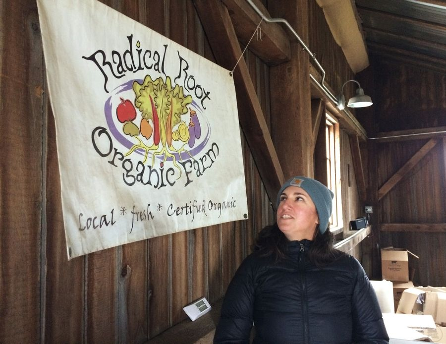 Alison Parker, co-owner Radical Root organic farm.