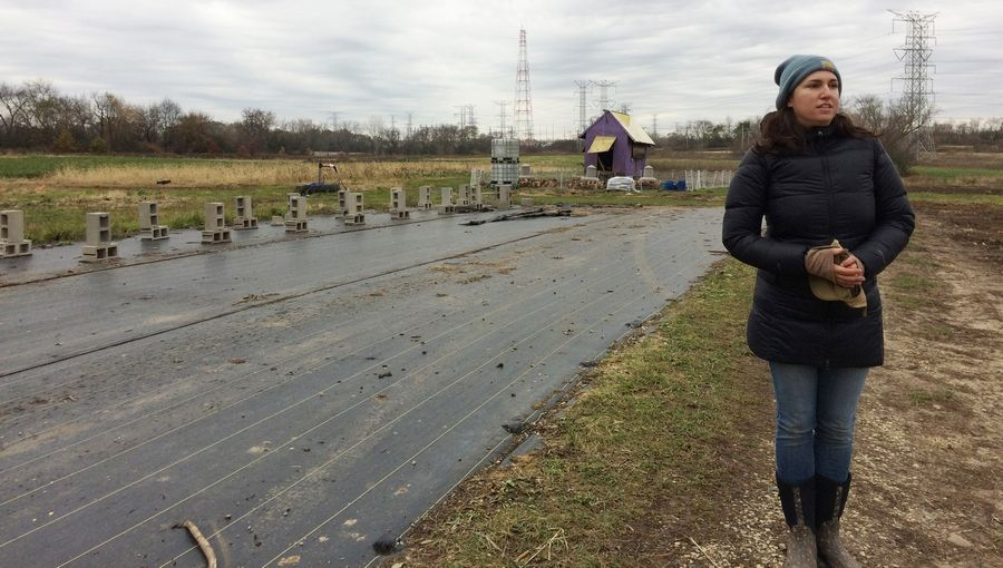 Alison Parker, co-owner Radical Root, stands next to what had been the floor of one of six hoop houses on the property on Milwaukee Avenue north of Libertyville.
