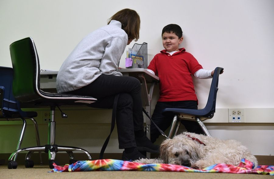 K-9 Reading Buddies of the North Shore therapy dog Max listens to Butterfield School first grade student Nicholas Godoy-Delgado read a story Wednesday at the Libertyville school.
