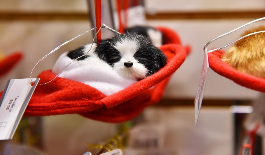 Pets and animal ornaments are available at Treetime in Lake Barrington.