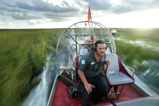 In this Tuesday, Oct. 22, 2019 photo, tour guide Gianni Magrini pilots an airboat across a sawgrass marsh in Everglades National Park. Margrini, whose livelihood depends on tourism, has been guiding in the park for 25 years.