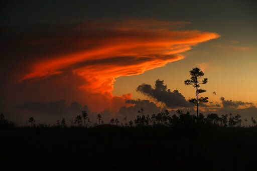 In this Tuesday, Oct. 22, 2019 photo, the first rays of sunlight color clouds over Everglades National Park, near Flamingo, Fla. The park receives nearly 60 inches of rain annually. 'œHere are no lofty peaks seeking the sky, no mighty glaciers or rushing streams wearing away the uplifted land,'� President Harry S. Truman said in a Dec. 6, 1947, address dedicating the Everglades National Park. 'œHere is land, tranquil in its quiet beauty, serving not as the source of water, but as the last receiver of it. To its natural abundance we owe the spectacular plant and animal life that distinguishes this place from all others in our country.""