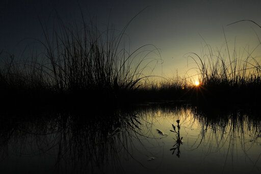In this Monday, Oct. 21, 2019 photo, the sun rises behind saw grass in a marsh at Everglades National Park near Flamingo, Fla. 'œHere are no lofty peaks seeking the sky, no mighty glaciers or rushing streams wearing away the uplifted land,'� President Harry S. Truman said in a Dec. 6, 1947, address dedicating the Everglades National Park. 'œHere is land, tranquil in its quiet beauty, serving not as the source of water, but as the last receiver of it. To its natural abundance we owe the spectacular plant and animal life that distinguishes this place from all others in our country.""
