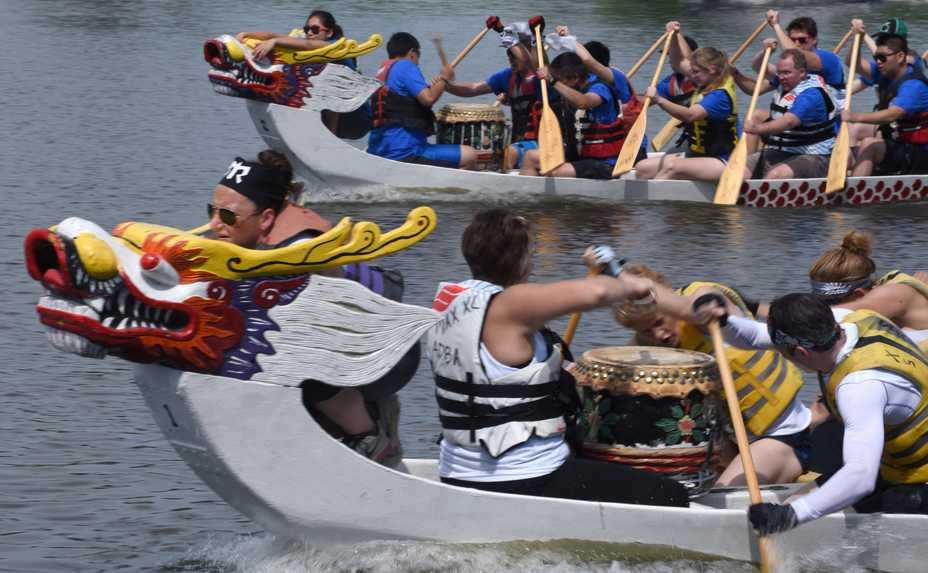 Dragon boat races may be making a comeback to St. Charles this summer as part of a new Heart of the Fox festival.