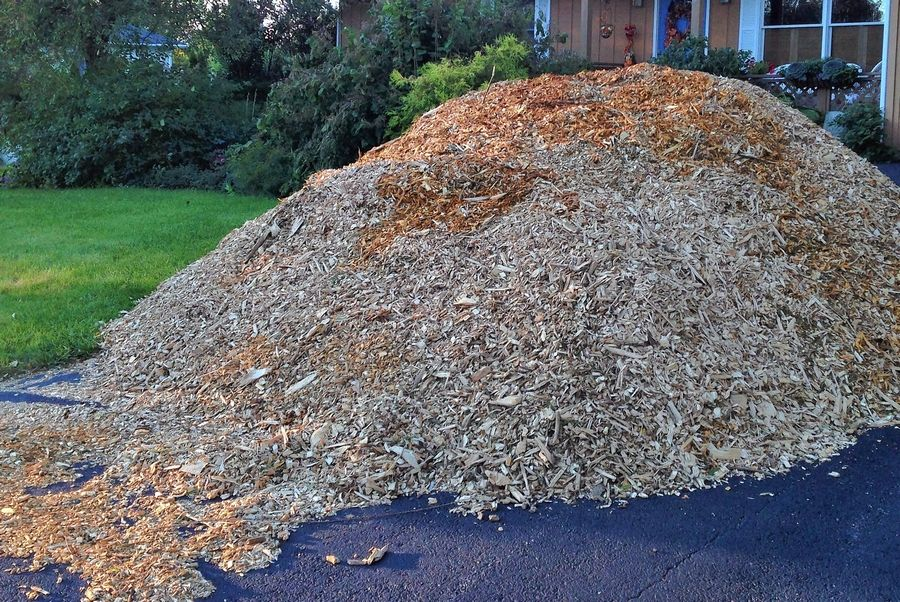 You may not be able to give a truckload of mulch as a Christmas gift, but you could give a gift certificate for some.