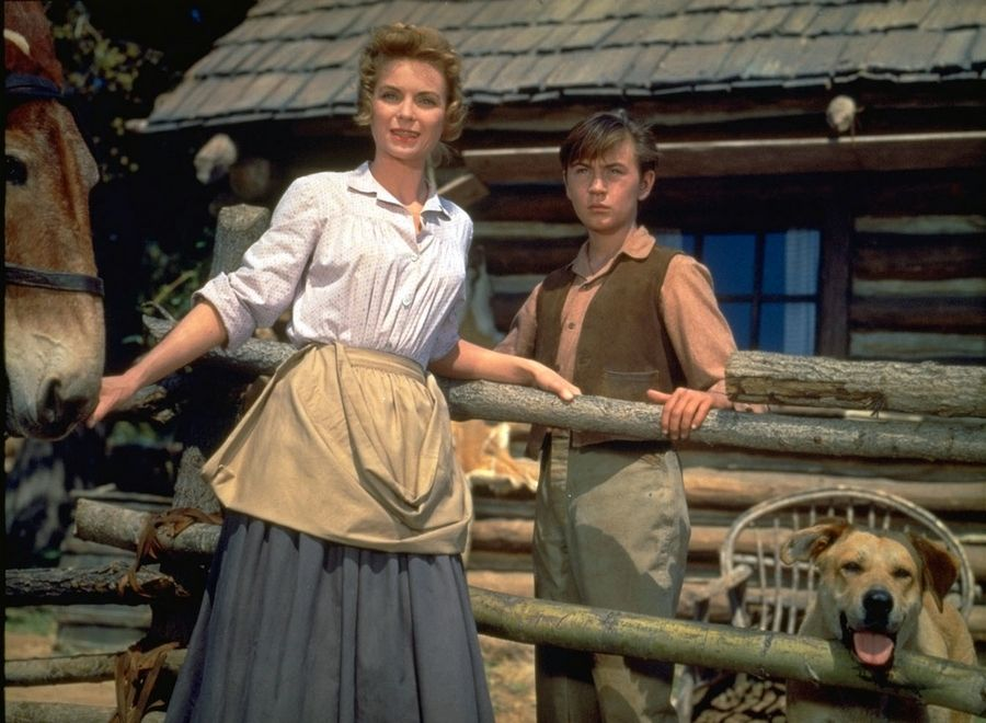 "Dorothy McGuire and Tommy Kirk starred in the 1957 classic ""Old Yeller."" The film is among 25 films to be added to the National Film Registry of the Library of Congress."