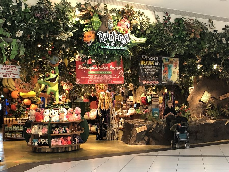 The Rainforest Cafe at Woodfield Mall in Schaumburg, which was the second and largest location of the chain when it opened in October 1995, will close with the end of its lease on New Year's Day.